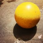 20150616_yellow